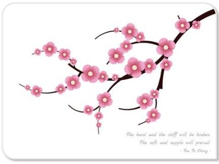 CSS3 Cherry Blossom