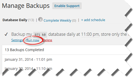 Wordpress Run Now Backup